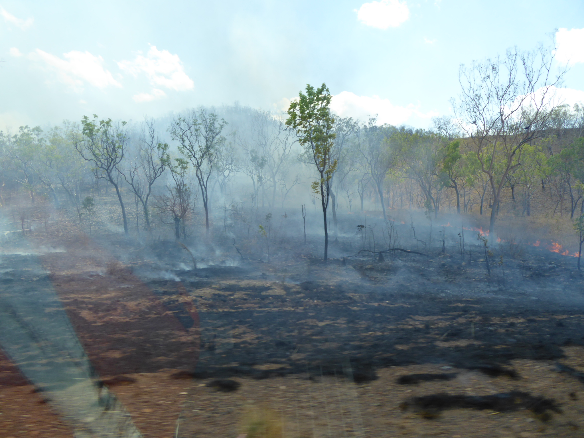Brush fire on the side of the Stuart Highway. Photo Credits Kelsey Josund